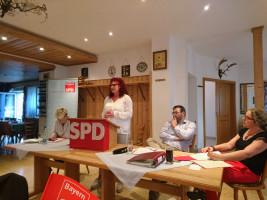 Die Europaabgeordnete Kerstin Westphal bezieht deutlich Stellung